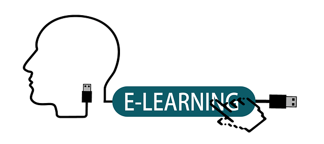 e-learning has been taking the world by storm over the past few years