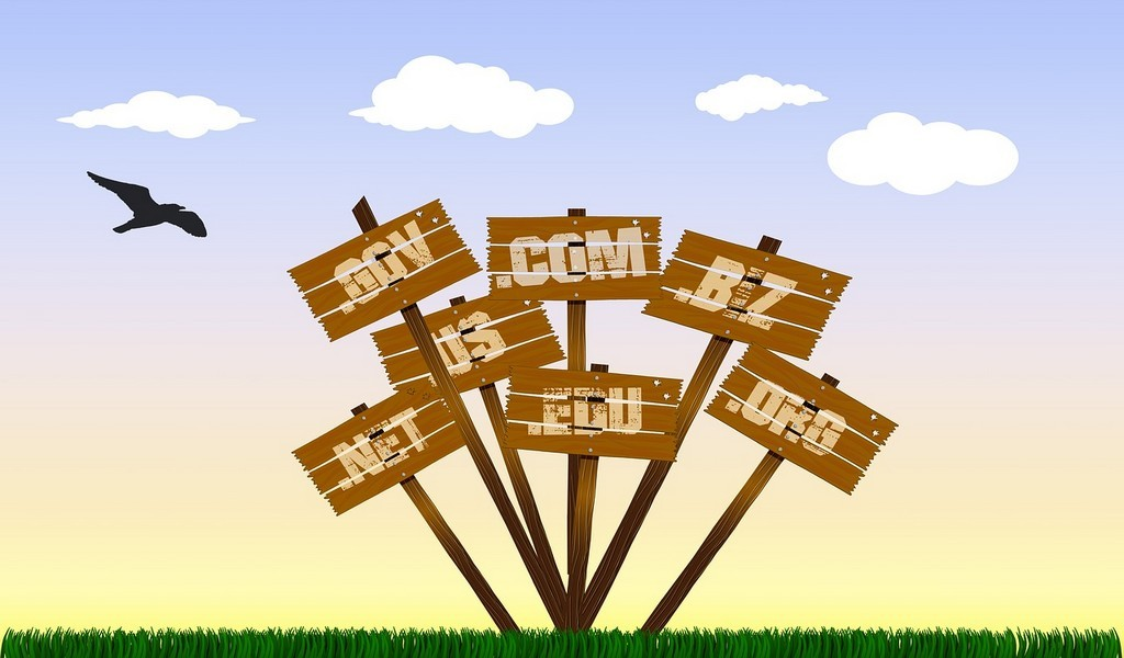 importance of domain names