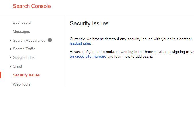 How to Check Security Issues on your Website