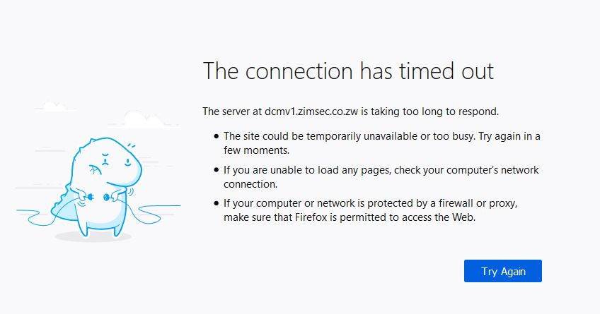 The ZIMSEC O Level Results Portal is Down
