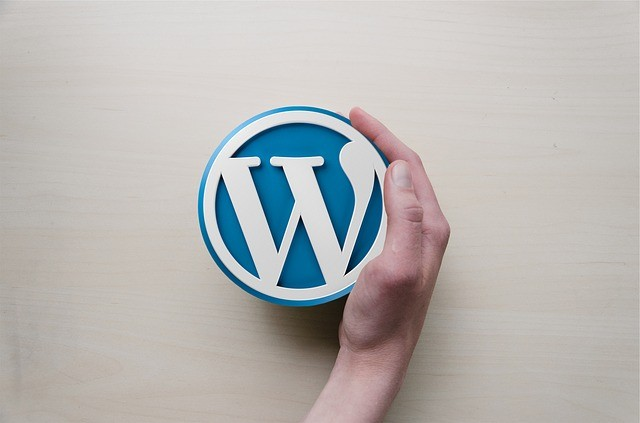 Troubleshooting a WordPress Theme
